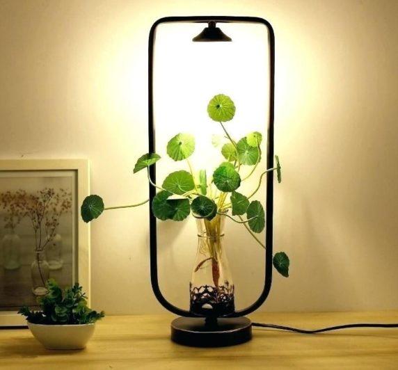 Торшеры с живыми растениями