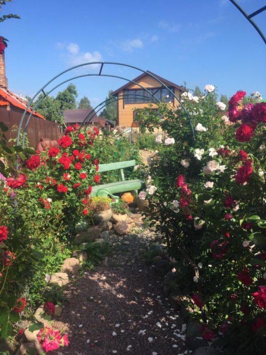 Арки в садовом ландшафте