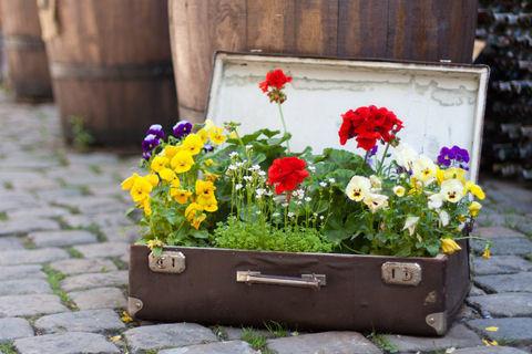 Чемодан с цветами