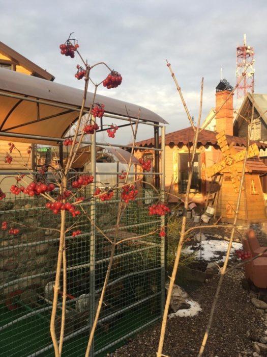 Мельница для украшения садового участка