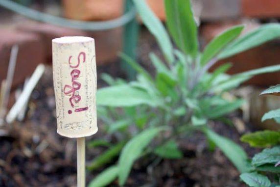Винные пробки для подписи растений