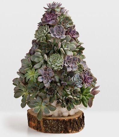 Живая елка своими руками из растений