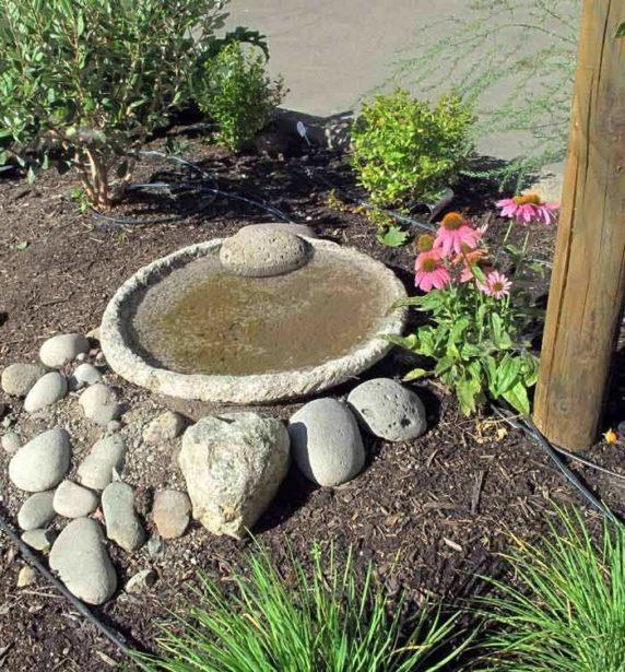 Садовый небольшой пруд из бетона