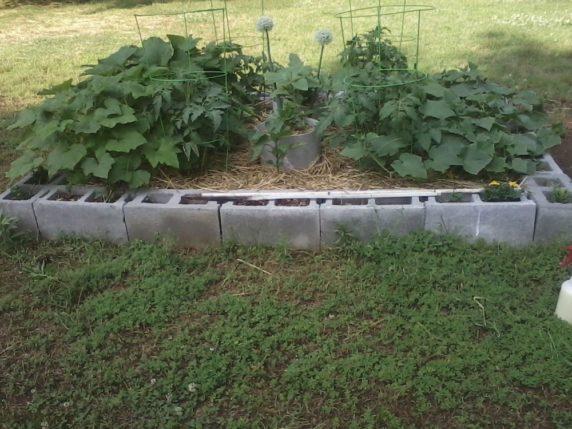 Садовая грядка из цемента