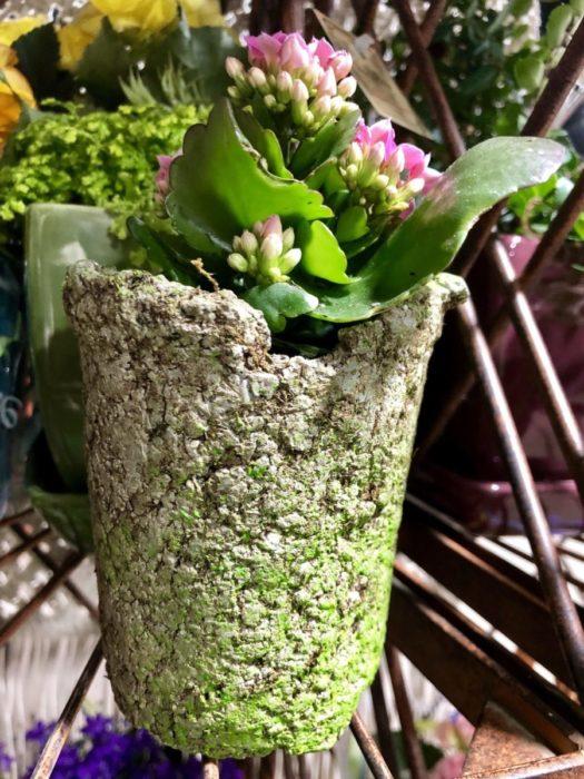 Цементный горшок для сада своими руками
