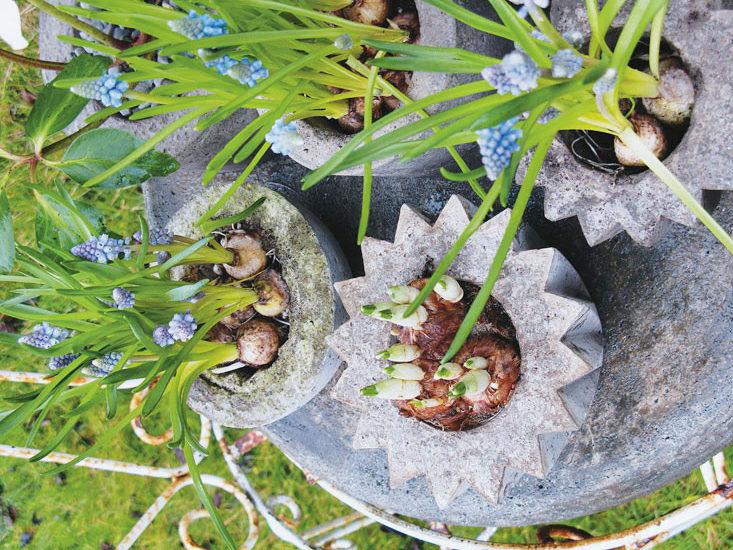 Изделия для сада из цемента своими руками