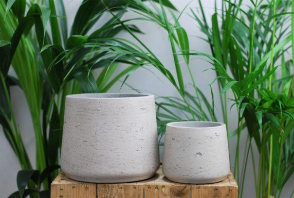 Горшок из цемента для растений