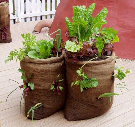 Горшок из цемента и мешка для сада