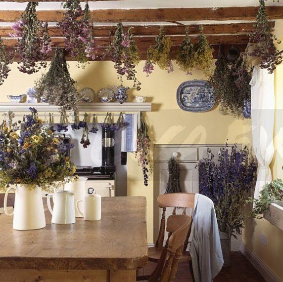 Подвесные сухоцветы в доме