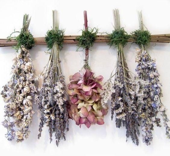 Подвесные сухоцветы