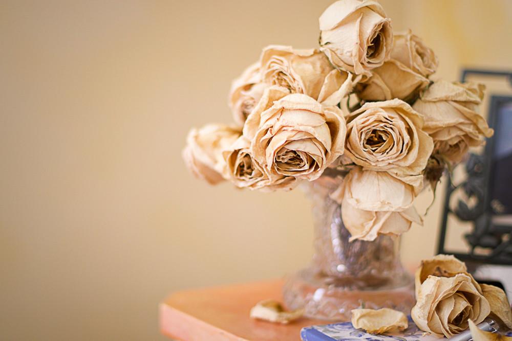 Букет из сухих роз в квартире
