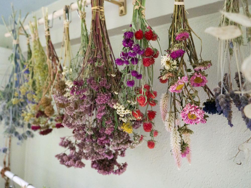 Как засушить цветы в домашних условиях