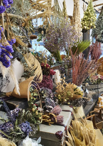 Где купить сухоцветы