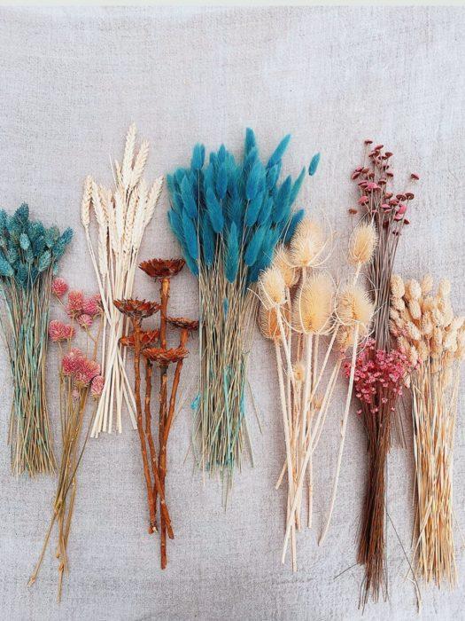 Красивые сухоцветы для украшения дома