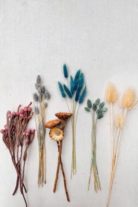 Красивые сухоцветы для интерьера