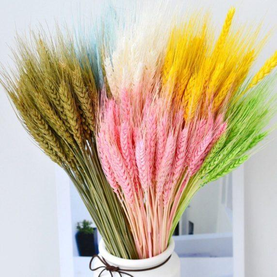 Необычные сухоцветы для декора дома