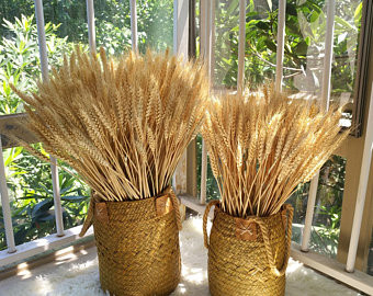 Букет из пшеницы в комнате