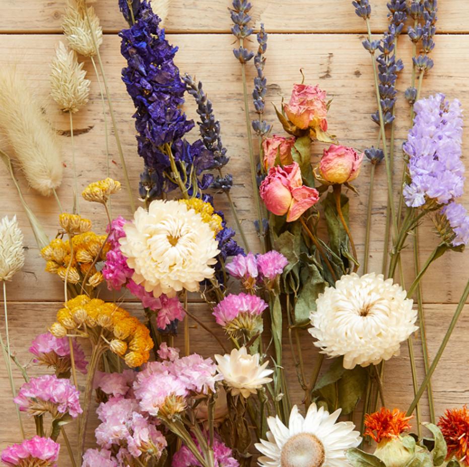Какие сухоцветы ставят в квартире