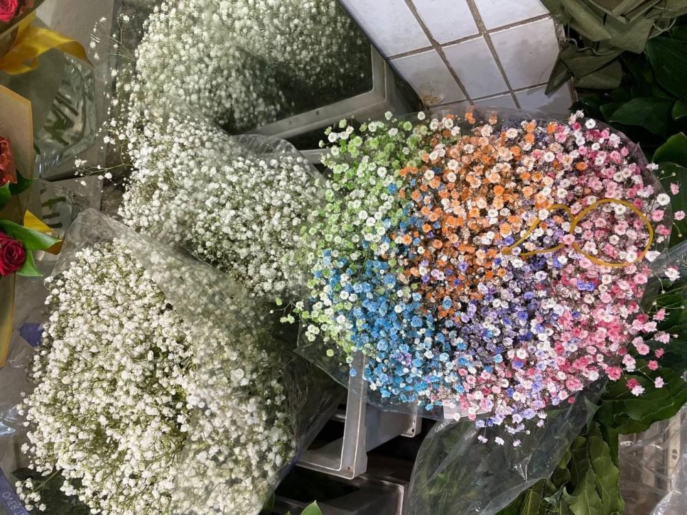 Ассортимент Рижского цветочного рынка